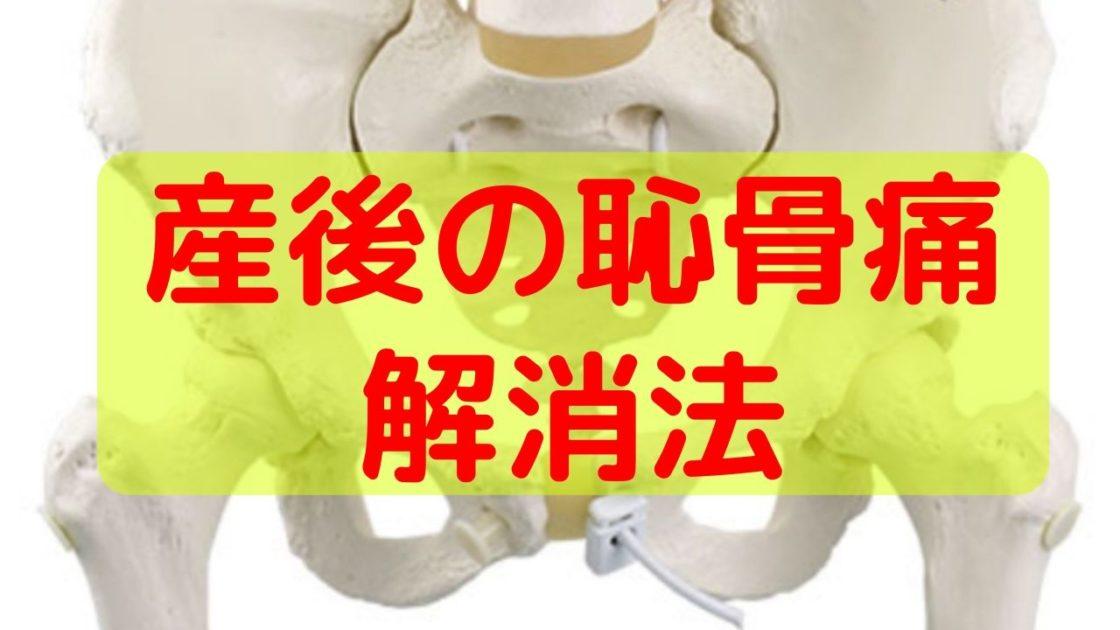 妊娠 後期 恥骨 痛