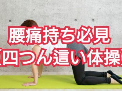 腰痛持ちはストレッチだけじゃない!【四つん這い体操】で腰痛を解消